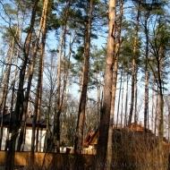 Продам участок Вита-Почтовая, продам участок 20 соток в сосновом лесу! (Код Т447)