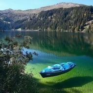 Продам Участок 30 соток на берегу Огромного зарыбленного озера. Музычи (Код T801)