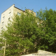(код объекта K17601) Аренда 3-х комнатной квартиры. Жилянская ул. 45, Голосеевский р-н.