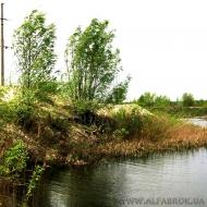 (код объекта T1188) Продажа земельного участка. Обуховский р-н, Козин (Конча - Заспа)