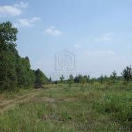 (Код объекта Т1658) Продажа земельного участка 10 соток. с. Ходосовка.