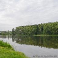 Продам участок 136 соток, Новоселки (Код T4335)