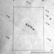 Продам участок 32 соток, Вышгородский р-н, Новые Петровцы, Ягоды (Код T14429)