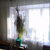 Продам квартиру, Киев, Днепровский, Соцгород, Пожарского ул. (Дарница), 13 (Код K43325)